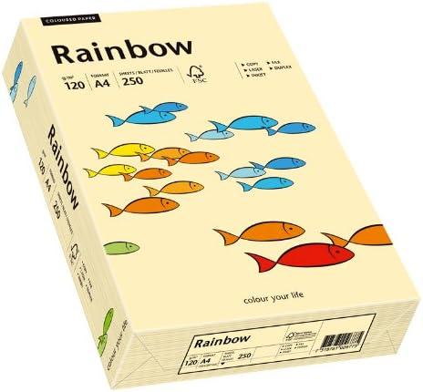 Papyrus 88042280 Druckerpapier Rainbow 120 g/m², A4 250 Blatt chamois
