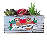 Sloth Lovers Succulent Planter, Live Fast Love Slow, Cute Garden Gift