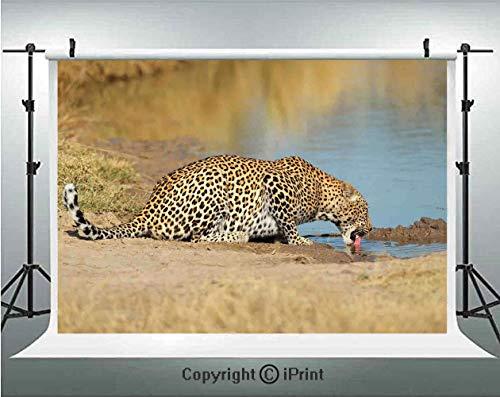 African Waterhole Camera - 2