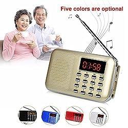 GES NET Mini Digital AM FM LCD Radio Speaker, Micro SD/TF USB Disk Speaker MP3 Music Player Stereo, Portable Pocket Novelty Radio Receiver, Handheld Radio (gold)