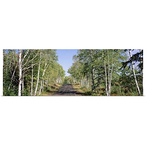 "GREATBIGCANVAS Poster Print Entitled Trees Along a Roadside, Brockway Mountain Drive, Keweenaw Peninsula, Copper Harbor, Michigan by 36""x12"""