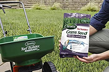 Scotts Turf Builder Grass Seed - Perennial Ryegrass Mix, 3-pound (Not Sold In Louisiana) 2