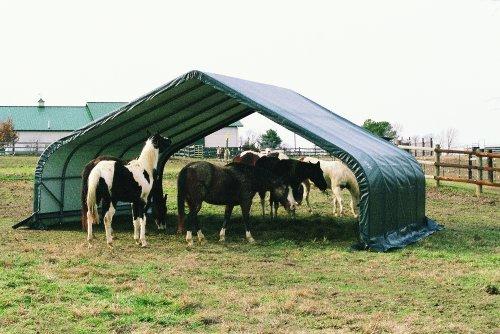 Peak Style Shelter - 5