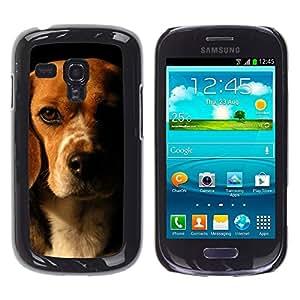 TopCaseStore / la caja del caucho duro de la cubierta de protección de la piel - Beagle Brown Black Dog Pet - Samsung Galaxy S3 MINI NOT REGULAR! I8190 I8190N