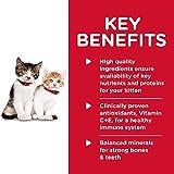 Hill's Science Diet Wet Cat Food, Kitten, Healthy