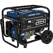 Powerhorse Portable Generator 11,000 Surge Watts, 8400 Rated Watts, Electric Start, EPA Compliant