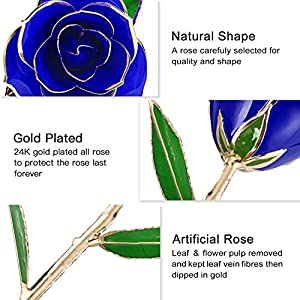 24k Gold Rose Flowers Artificial Rose with Gift Box and Transparent Stand for Valentine, Mother's Day, Anniversary, Birthday, Gift for Sister Friend, for Decoration Preserved Forever 4