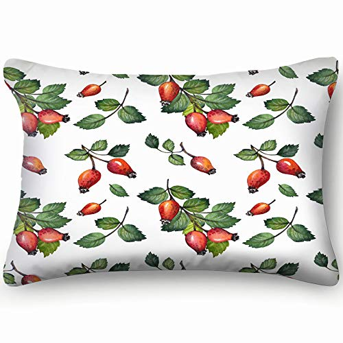 X-Large Pattern Red Rosehips Berries Green Antioxidant Healthcare Medical Decor Pillowcase Soft Zippered Throw Pillow Cover Cushion Case Two Sided Printed Queen 20 X 30 Inch