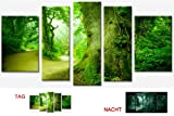 Startonight Canvas Wall Art Trees the Forest, Forest USA Design for Home Decor, Dual View Surprise Wall Art Set of 5 Total 35.43 X 70.87 Inch 100% Original Art Painting!