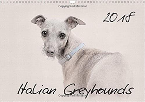 Whippets 2018 2018: This High-Class Wall-Calendar Presents Impressive Images of the Whippets in All its Beauty.</p> <p>&nbsp;</p> <p>Whippets 2018 2018: This High-Class Wall-Calendar Presents Impressive Images Of The Whippets In All Its Beauty. (Calvendo Animals) >> <a  rel=
