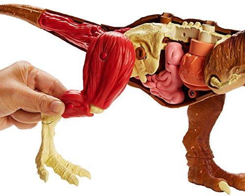 Jurassic World Stem Tyrannosaurus Rex Anatomy Kit by Jurassic World Toys (Image #2)