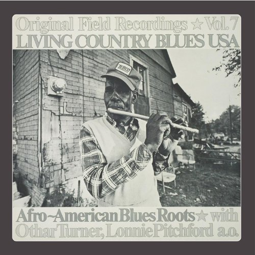 Image result for living country blues usa vol. 7