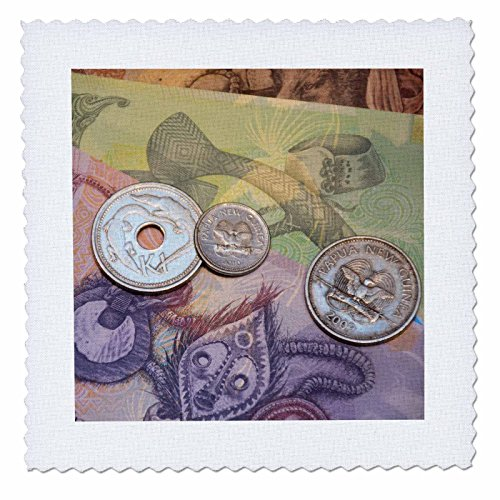 Danita Delimont - Currency - Papua New Guinea. Village of Vanimo. Colorful PNG money. - 12x12 inch quilt square (qs_228535_4)