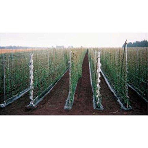 【15個】 MARSOL ナガイモネット 菱目 HC34148 目合い24cm 巾1.8m×長さ300m 長芋 日本マタイ 代不 B06ZZHTK95