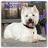 West Highland White Terriers 2018 12 x 12 Inch Monthly Square Wall Calendar with Foil Stamped Cover, Animals Dog Breeds Terrier Puppies (Multilingual Edition)