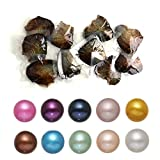 Pearl Oyster with Round Pearl Inside 10PC Freshwater Cultured Love Wish Oysters 10 Colors (7-8mm)