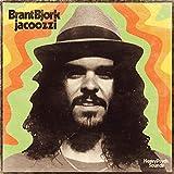 51bV8rB0XCL. SL160  - Brant Bjork - Jacoozzi (Album Review)