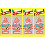 Little Trees Coral Reef Air Freshener, (Pack of 24)