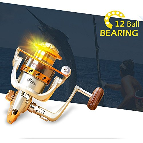 YUMOSHI 12BB Fish Spinning Reels with Left/Right Interchangable Metal Aluminum Rocker-Arm for Saltwater Freshwater Powerful Fishing (EF500-EF9000 Series) (EF4000)