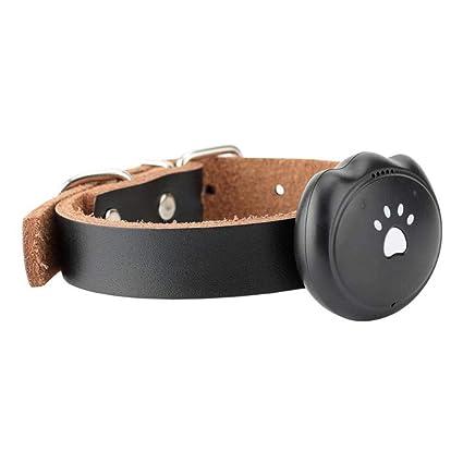 Amazon com: XDYFF Dog GPS Tracker with SOS Emergency Rescue