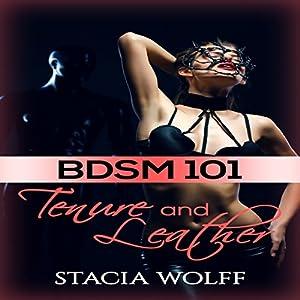 BDSM 101 Audiobook