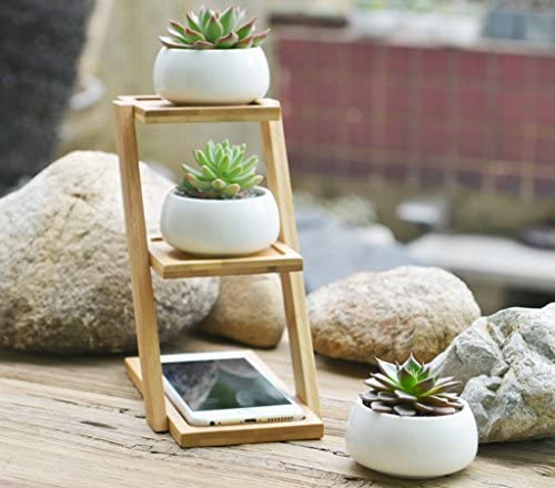 Jusalpha 3.2 Inches Ceramic Round Succulent Plant Pot, Flower Pots with Drainage Hole Planter for Succulent Plants, Cactus and Herbs Pot with Bamboo Tray for Room Decor- Set of 3 Planter 01 White