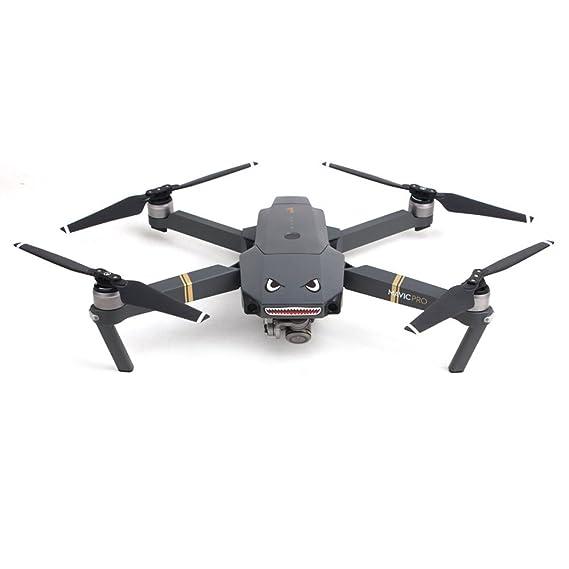 Orcbee - Adhesivo Impermeable para dron dji Mavic 2 Pro RC: Amazon ...