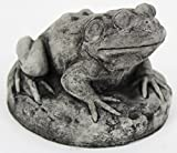 Frog on Rock Concrete Statue