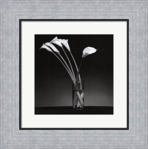 Arums 1990 by Pierre Michaud Framed Art Text Wall Picture, Flat Silver Frame, 14 x 14 inches