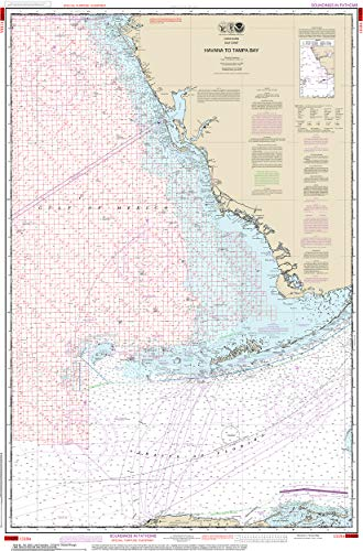 Tampa Bay Area Map - Nautical Map Poster - Havana to Tampa Bay (Oil and Gas Leasing Areas), Gloss finish