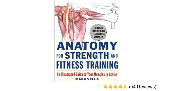 Anatomy For Strength And Fitness Training An Illustrated Guide To