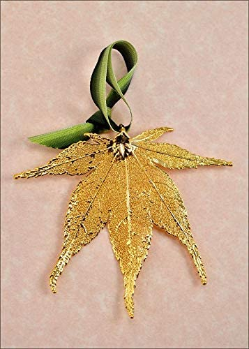 amazon com japanese maple ornament gold real leaf ornaments japanese maple leaf ornament jewelry japanese maple ornament gold real leaf ornaments japanese maple leaf ornament