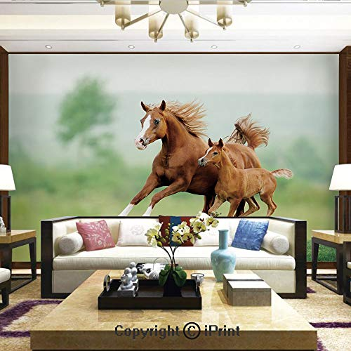 Wallpaper Nature Poster Art Photo Decor Wall Mural for Living Room,Running Chestnut Horses Mare and Foal Meadow Scenic Summer Day Outdoors,Home Decor - 66x96 inches