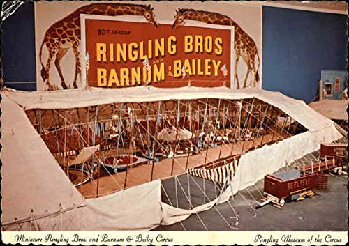 Ringling Museum of the Circus Sarasota, Florida Original Vintage Postcard