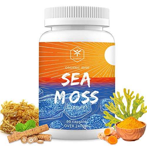 Irish Sea Moss Capsules Organic Bladderwrack Burdock Root for Women & Men Seamoss Supplements Improved Absorption with Turmeric, Non-GMO, Vegan, No Fillers, Per Over 2400Mg 60 Capsules.
