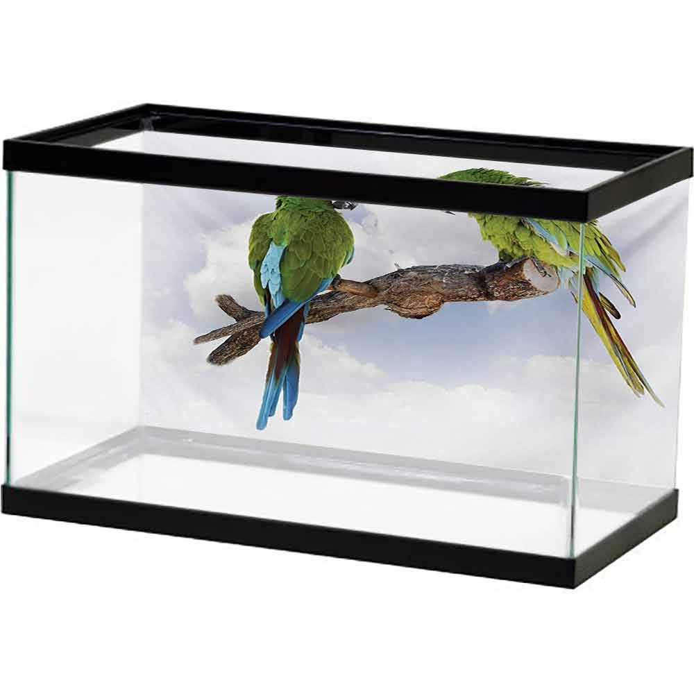 bybyhome Fish Tank Backdrop Poster Parrot,Two Parrot Macaw on a Branch Talking Birds Clever Creatures of The Nature,Green White Brown with Sticker on The Backside by bybyhome