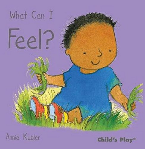 What Can I Feel? (Small Senses) ebook