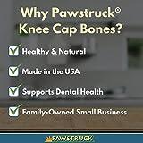 Pawstruck Knee Cap Bones for Dogs (10 Bones) Made