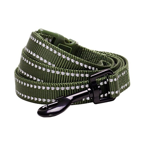Blueberry Pet 6 Colors Durable 3M Reflective Classic Dog Leash 4 ft x 1, Olive Green, Large, Leashes for Dogs