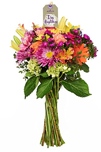 Hallmark Flowers Bouquet, Deluxe Celebration, No (Gerbera Flower Arrangements)