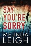 Say You're Sorry (Morgan Dane)