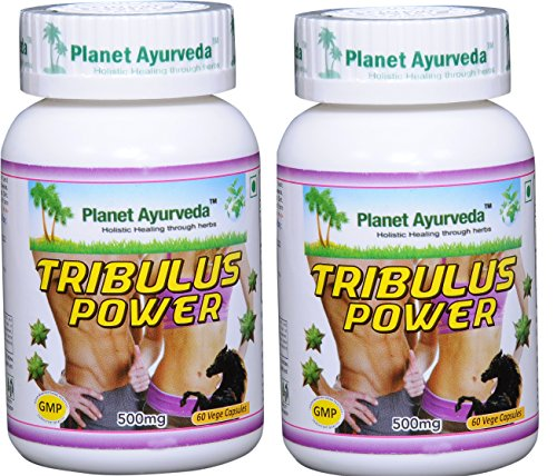 Planet Ayurveda Tribulus Power, 500mg Veg Capsules - 2 Bottles - Bring Out the Man in You by Planet Ayurveda