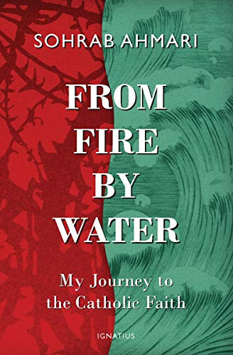Pdf Spirituality From Fire, by Water: My Journey to the Catholic Faith