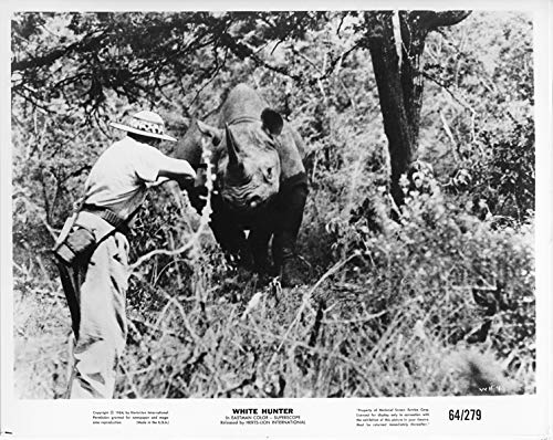 White Hunter original 1964 8x10 photo hunter aims rifle at charging hippo
