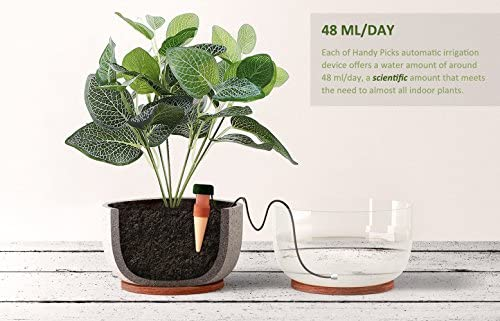 Watering Stakes, Indoor Plant Watering System, Automatic Drip Irrigation  Devices for Indoor Plants During Holiday Automatic and Scientific Drip