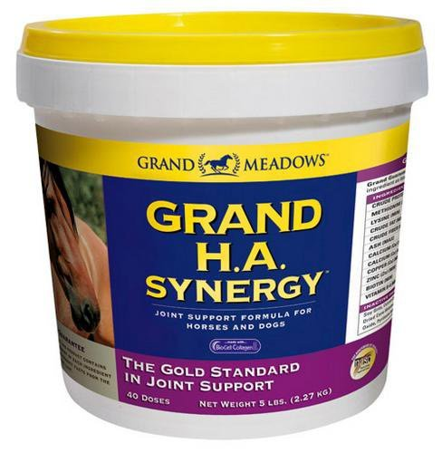 Grand Meadows Grand HA Synergy