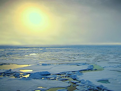 Arctic Ocean: The Frozen Sea (Frozen Planet To The Ends Of The Earth)