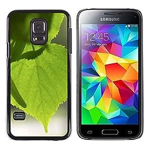 Be Good Phone Accessory // Dura Cáscara cubierta Protectora Caso Carcasa Funda de Protección para Samsung Galaxy S5 Mini, SM-G800, NOT S5 REGULAR! // Tree Green Nature Sun Leaf