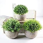 MARJON-FlowersArtificial-Plants-Mini-Fake-Green-Grass-Artificial-Grass-Flowers-Tree-Ball-Plants-Pot-Simulation-Greenery-Bushes-Indoor-Outside-Home-Garden-Office-Verandah-Wedding-Decor