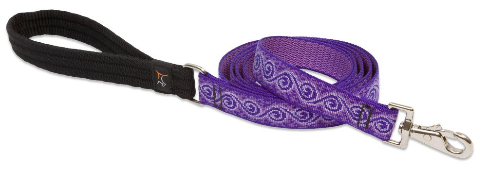 LupinePet Originals 1'' Jelly Roll 6-Foot Padded Handle Leash for Medium and Larger Dogs